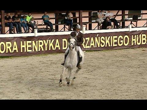 Kolejna runda Otwartego Pucharu Podkarpacia w Skokach Konnych