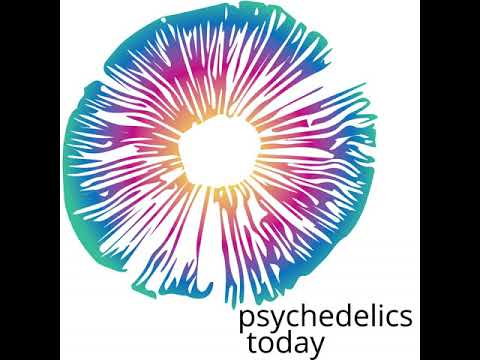 Tim Cools - The Yelp of Psychedelic Organizations & Retreats