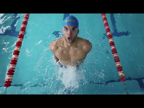 Плавание. Мастер спорта по плаванию. Украина