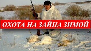 Охота на зайца зимой!ЭФФЕКТИВНАЯ охота