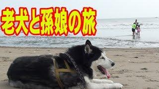 梅雨の晴れ間6月の終わり大潮の日 茨城県波崎迄モーターホームで遊びに...