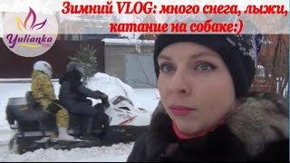 Зимний VLOG: семейные прогулки, катание на собаке, ЛЫЖИ, физическая активность