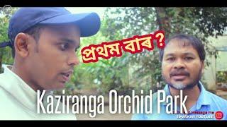 Amazing 35 বিধ তুলসী । Different Bamboos | Akhil Gogoi and Me | Kaziranga Orchid Park | Largest Park