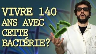 CETTE BACTÉRIE PEUT VOUS FAIRE VIVRE 140 ANS ? Vrai ou Faux #12