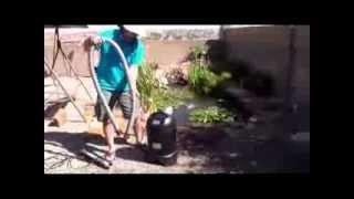 Backyard Bass Pond: Pond Maintenance Using The Pond Vacuum Xpv