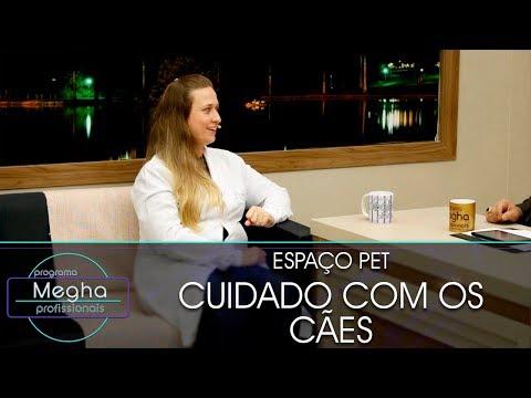 Cuidado Com Os Cães | Dra. Luciana Fonseca | Pgm 653 | B2