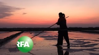 Unsavory Times for Cambodia's Salt Farmers