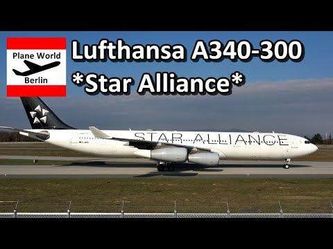 Lufthansa Airbus A340-300 *Star Alliance* landing in Frankfurt
