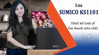 Loa Karaoke Gia Đình Hay Sumico KS1101 | Với thiết kế tinh tế - Âm thanh chất - Vidia 0902699186