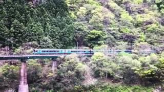 秘境を走る列車 土讃線 大歩危峡