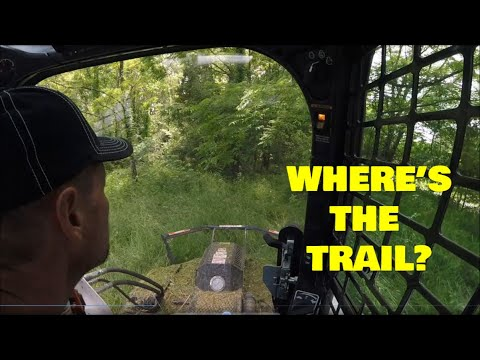 Mowing Trails, Overgrown roads, Kioti vintage, Illinois land & Bobcat T650