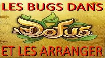 Dofus 1.29 - BUG CONNEXION AU SERVEUR INFINI RESOLU