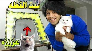 صنعة بيت للبزونه ( للقطه) بـ أدوات بسيطه Make a house for cats | مصطفى ستار