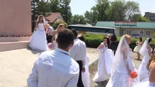 Триумф невест, Спасск-Дальний. 2014