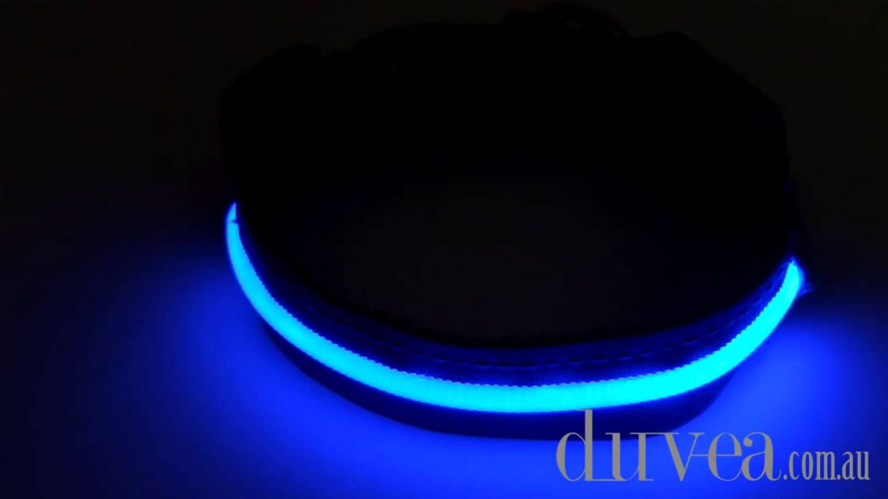 engraved led light custom wristband up blank optical glow bracelet wristbands personalized bands collar orange dog