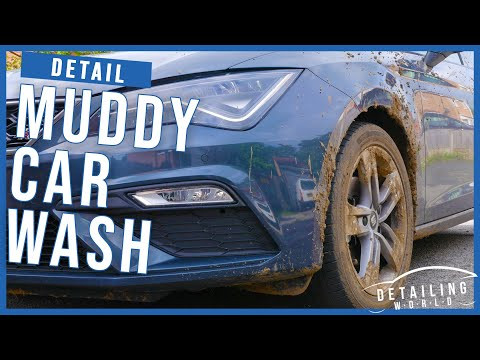 How To Safely Clean A Muddy Car - Seat Leon FR