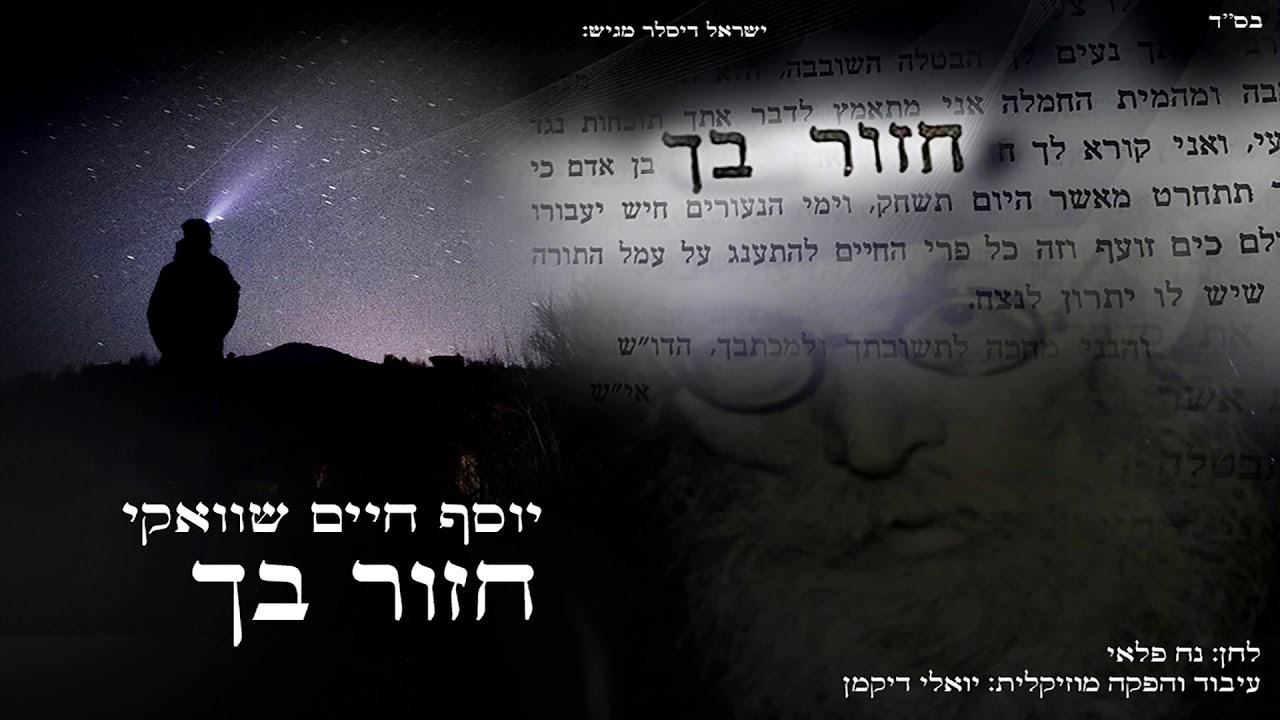 יוסף חיים שוואקי - חזור בך | Yosef Chaim Shwekey - Chazor Becha