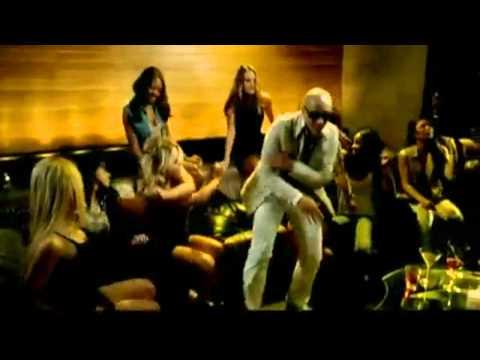 Pitbull Top 20