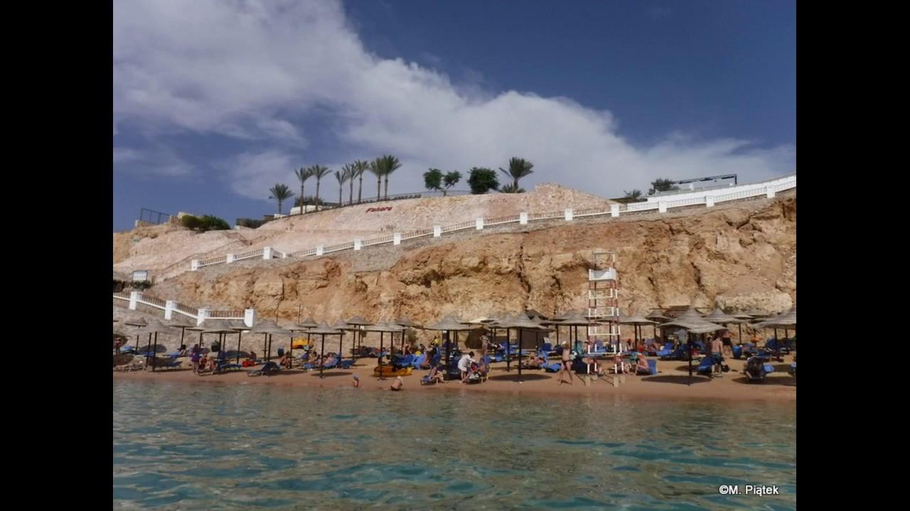 Reef With Bannerfish Picture Of Jaz Fanara Resort Residence
