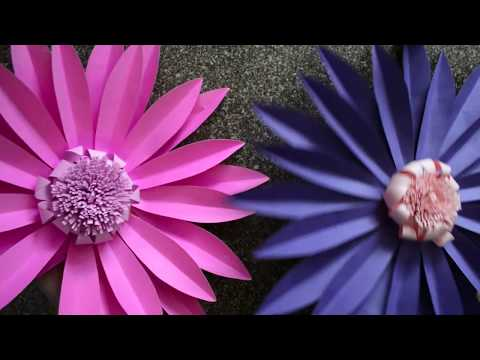 How to make Giant Paper Flowers without Templates | Easy Paper Flowers Tutorial