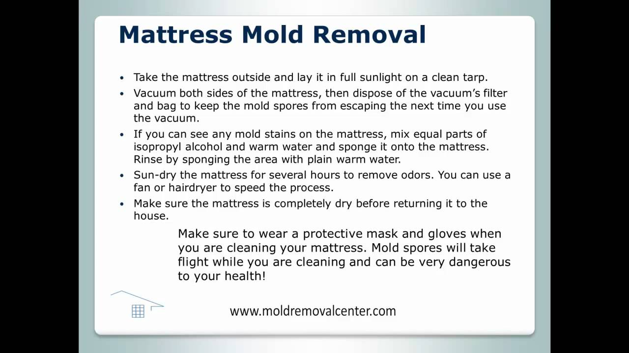 Mattress Mold Removal Youtube