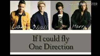 💙💚One Direction-If I could fly(lyrics+pictures)💚💙
