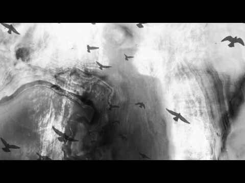Sleep Dealer - Spring Thaw