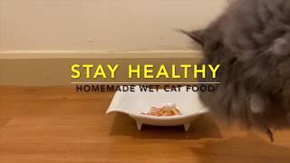 Homemade wet cat food