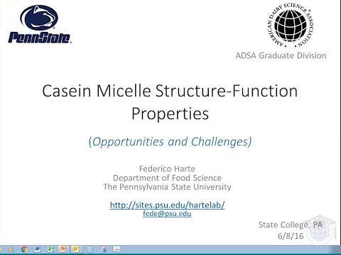 Casein Micelles Structure-Function Properties (Opportunities and Challenges)