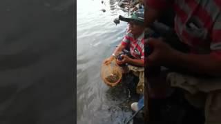 mancing baronang spot gondola by garongers ancol