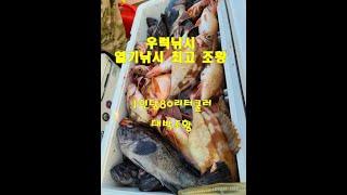 우럭낚시 침선낚시 선상낚시 낚시 boatfishing …