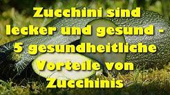 Zucchini sind lecker und gesund –  5 gesundheitliche Vorteile von Zucchinis
