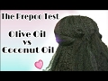 Natural Hair Wash Day Routine   Prepoo with Olive Oil vs Coconut Oil   Which is best?