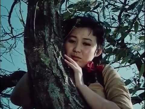 A Broad Bellflower 1987 Torajikkot North Korea Drama Movie