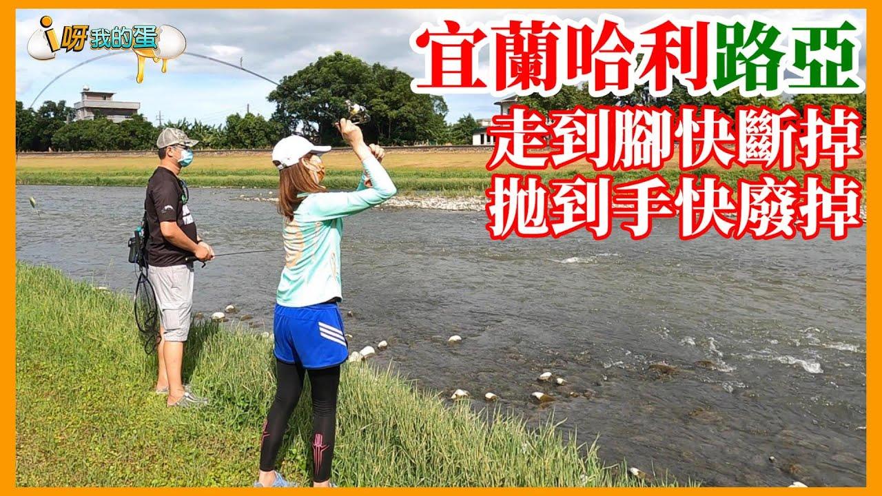 【釣魚小益思】宜蘭路亞釣上癮  挑戰野場  初學者的好朋友  就是用螺旋槳  #SPOON 氈泳 #釣蝦 #i呀我的蛋 #釣魚 Shrimp fishing  エビ釣り  새우 낚시