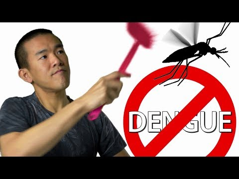 Mosquitoes Might SAVE Lives, Thanks To Bacteria   I Contain Multitudes