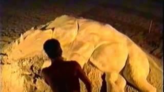 Samuel la Roze, sculpteur de sables