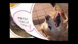 詳細はこちら⇒http://www.infotop.jp/click.php?aid=116245&iid=23641 ...
