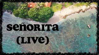Holly Tatnall - Señorita (live sessions) (Lyric Visualizer)
