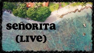Holly Tatnall - Señorita (live sessions) (Lyric Visualizer)