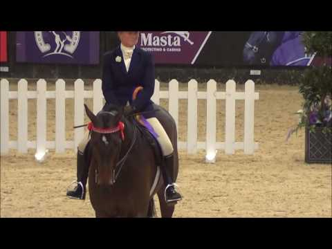 Pearly King and Sarah Carey - HOYS 2016 - Reserve Hack of the Year