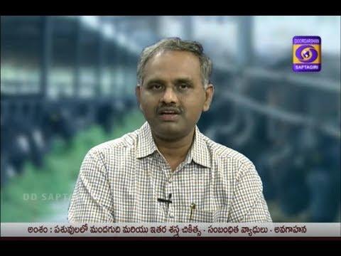 Pasuvula lo Mandagudhi Sastrachikischalu Dr N V V HARIKRISHNA