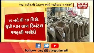 ખેડૂતો પાસેથી Gujarat Government એ 492 કરોડની ટેકાના ભાવે ખરીદી GroundNut  | Vtv News
