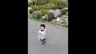 [육아일기]_함께 나누고 싶은 우리아이 성장과정