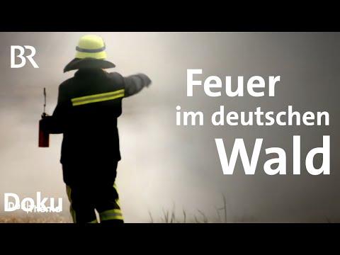 Spezialeinsatz Waldbrand: Sind Großfeuer ein Problem für die deutschen Feuerwehren?   DokThema   BR