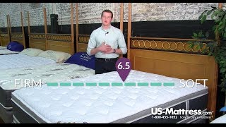 Spring Air Four Seasons Back Supporter Summer Nights Double Sided Plush Euro Top Mattress