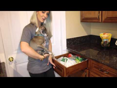 House Tour Vlog