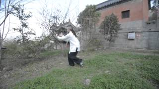 Wudang Qi Gong 5 Elements Dragon