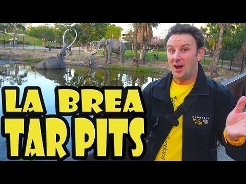 La Brea Tar Pits Travel Guide