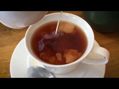 Чайный гриб: как вырастить с нуля?